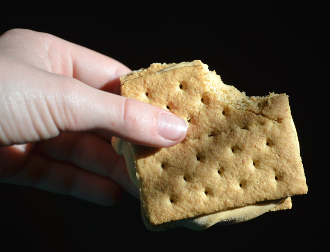 graham crackers, pudding