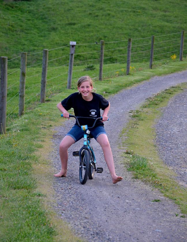 http://www.farmgirlfollies.com/wp-content/uploads/2013/05/bike.jpg