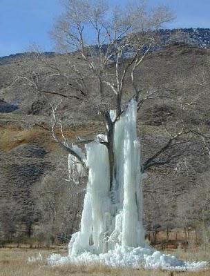 ice_tree1
