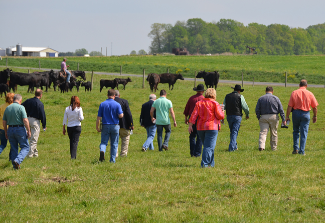 Field day at Angus Farm