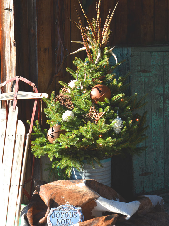 Christmas Tree on the Porch