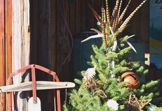 Rustic Christmas tree on back porch