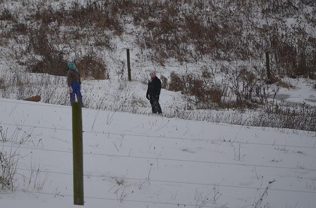 Kids sledding in pasture