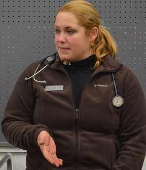 Dr. Trish - drtrishvet.com