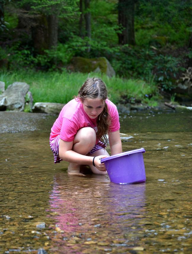 creek playing