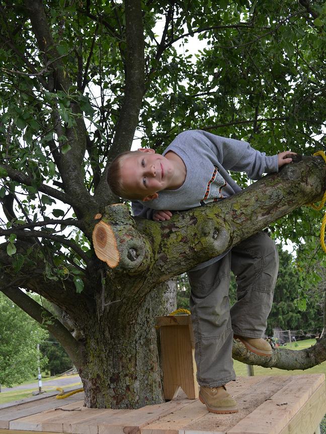 boy in treehouse