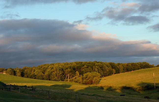Pasture shadows