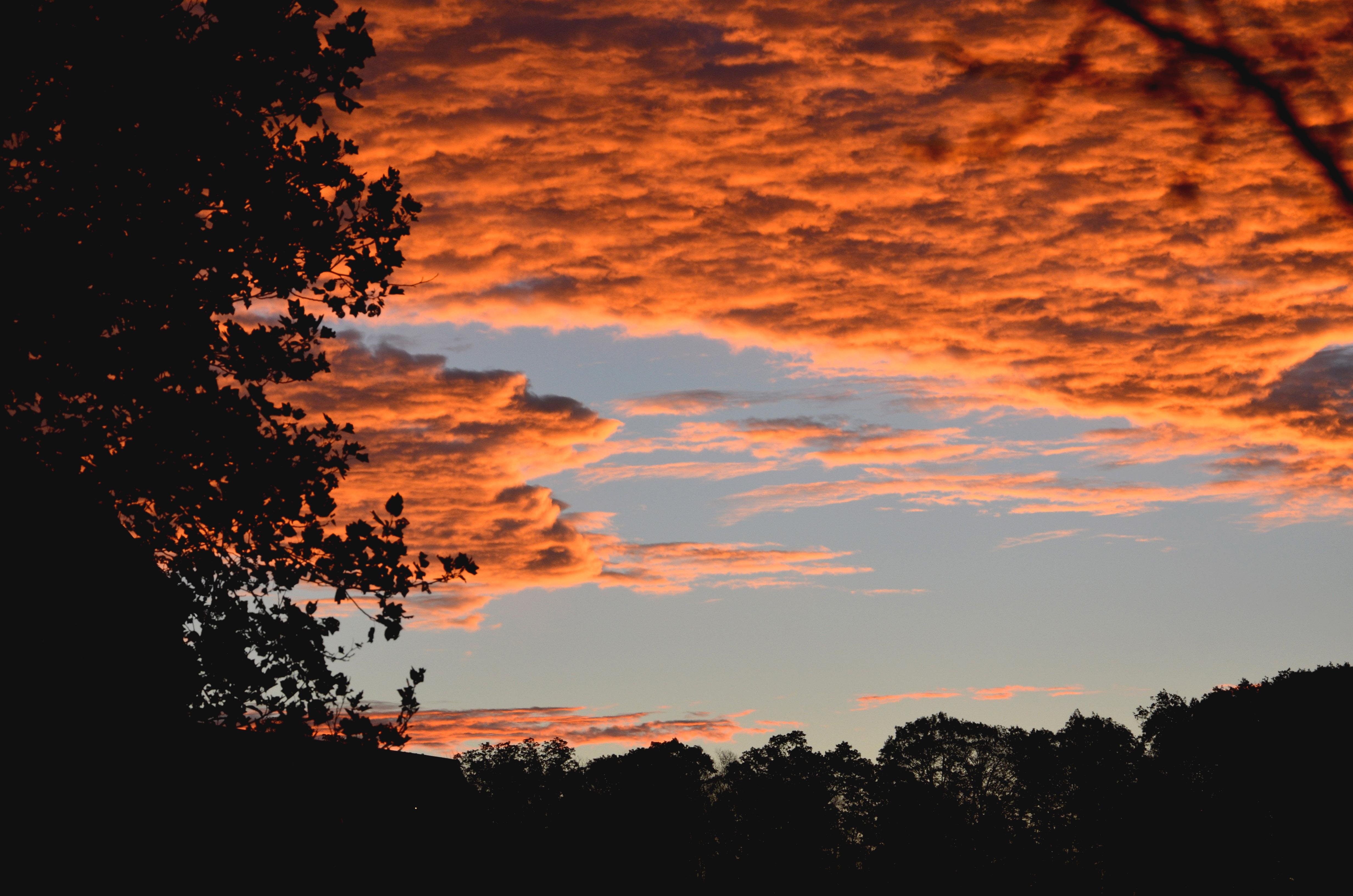Brilliant November sunrise
