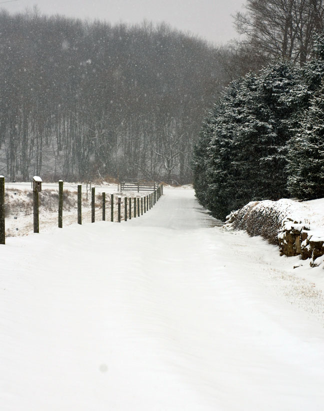 Snowy farm lane
