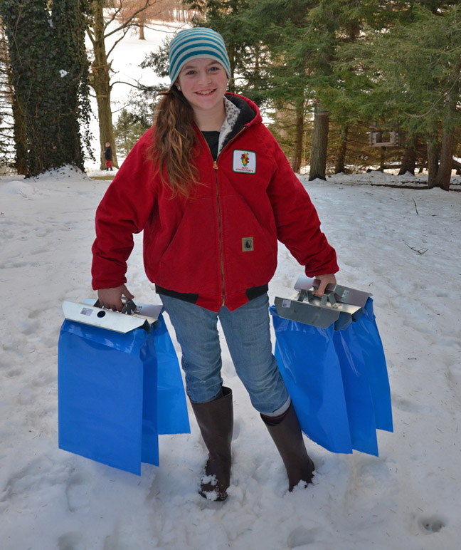 Hanging bags for collecting maple sap