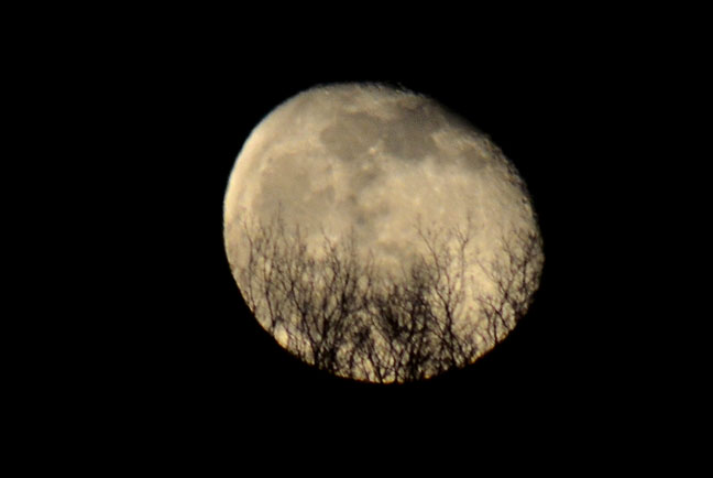 Moon on April 17, 2014 |  Farmgirl Follies