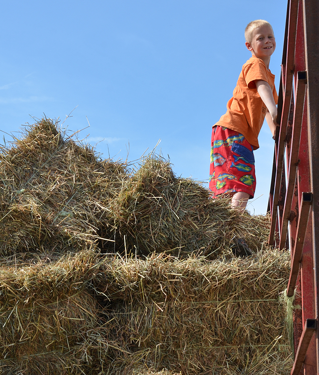 Unloading the hay wagon ... in swim trunks, which I do not recommend for hard work.