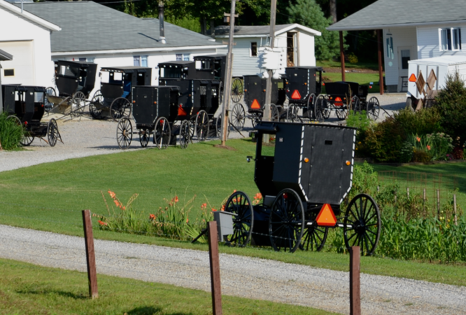 Amish Sunday next door