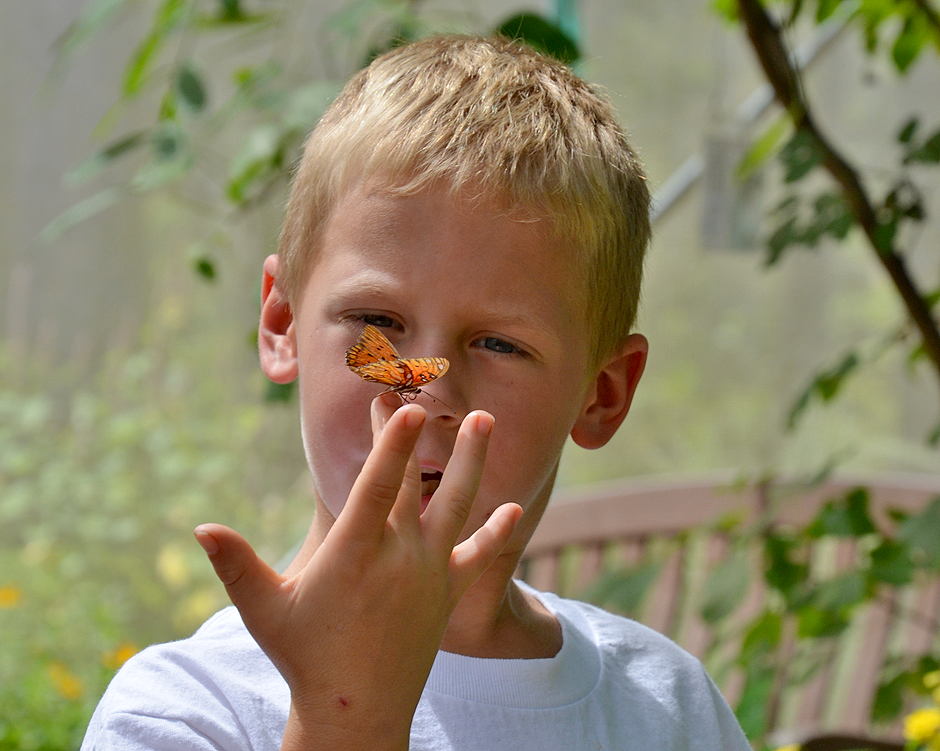 Up close and personal with the butterflies at Beech Creek Gardens.