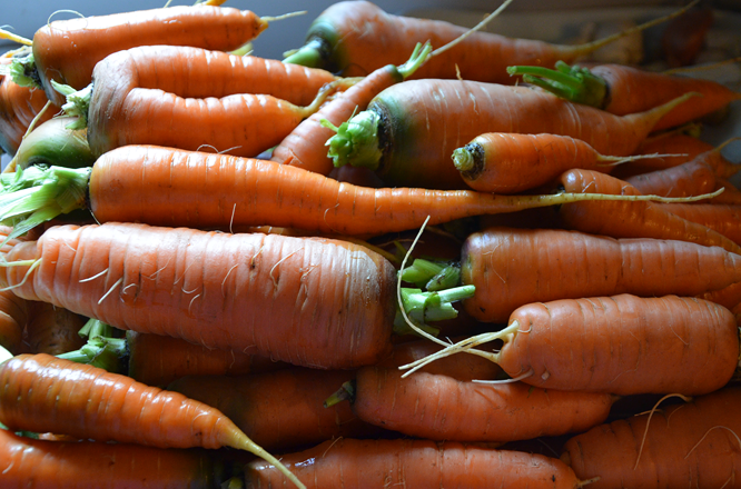 How to freeze carrots in six steps.