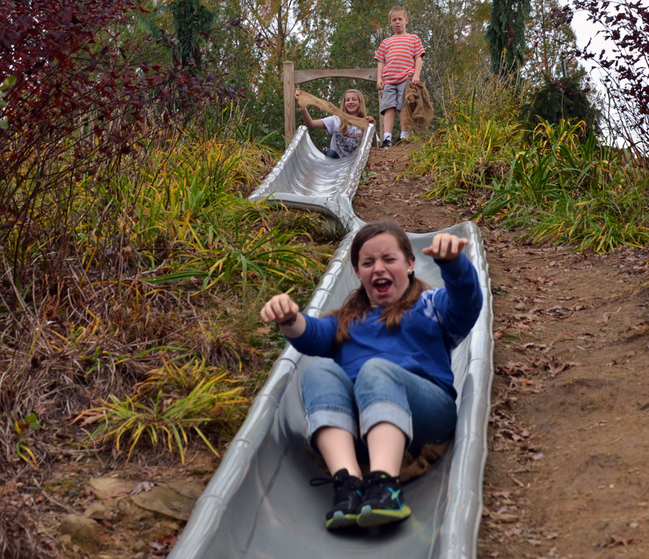 Sliding in autumn at Secrest Arboretum in Wooster, Ohio.