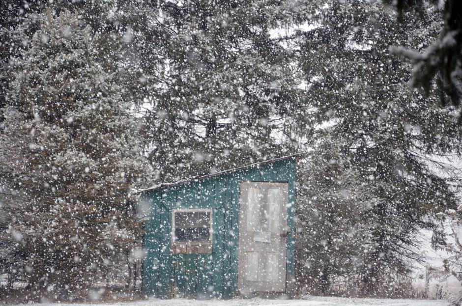 January snowstorm