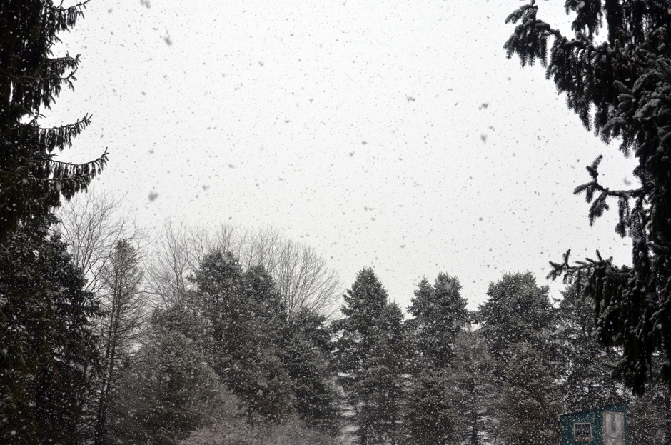 Fluffy flakes