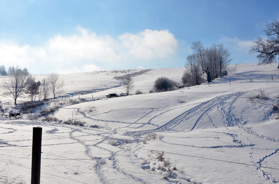Paths through winter
