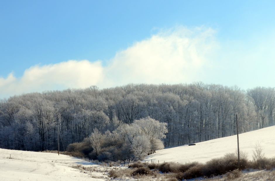 Winter scenes from Tuckaway Farm