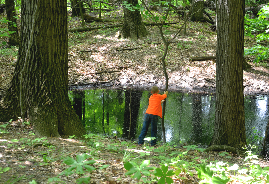 Flint pits dug by Indians can still be seen at Flint Ridge State Park.