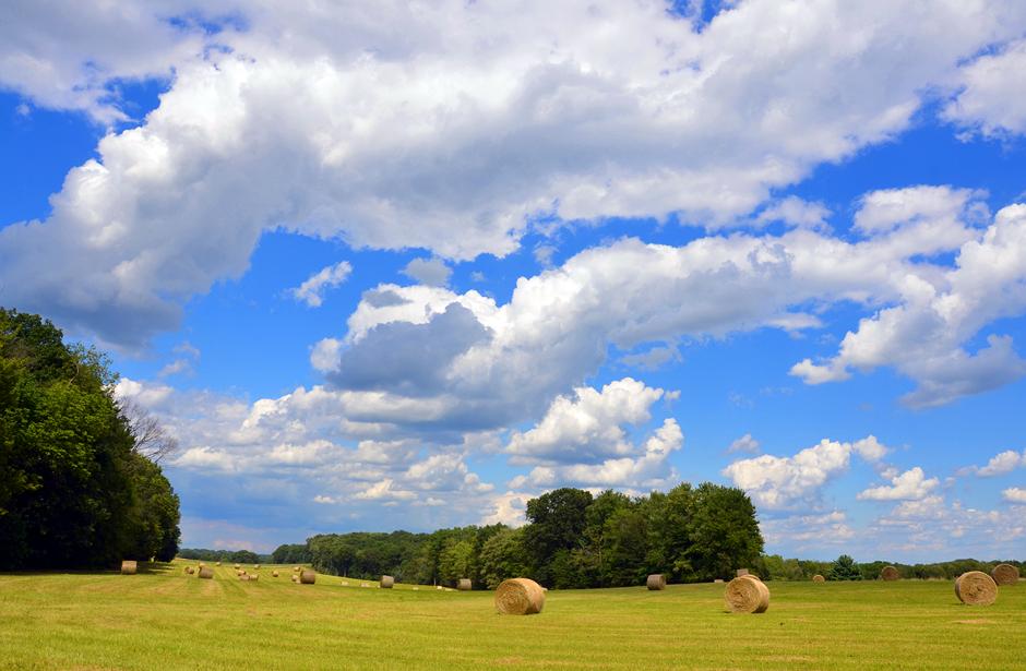Hay field and blue skies.