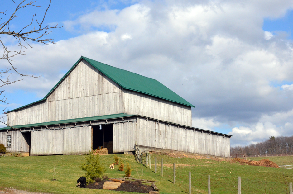 Old barn, new roof!